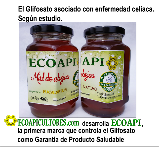 ecoapii miel sin glifosato