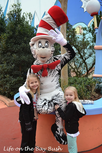 Universal olrando Cat in the Hat