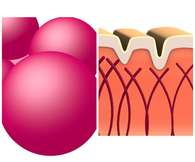 What is collagen, collagen uses, collagen in food