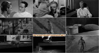 The Incredible Shrinking Man / El icreible hombre menguante / El increible hombre que encoje