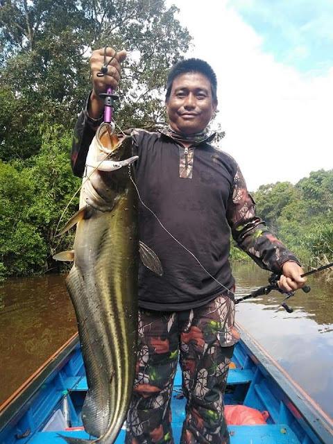 Ikan Besar Sungai Labai