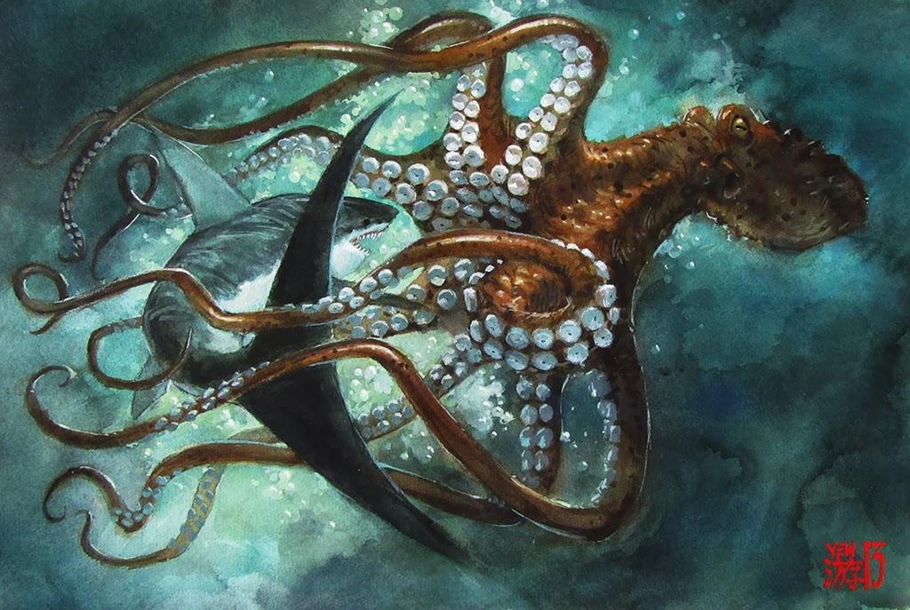 Forex squid
