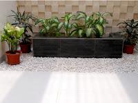 TUKANG TAMAN minimalis di jakarta selatan | DESAIN TAMAN memakai tanaman sederhana namum tetap indah dan berkwalitas