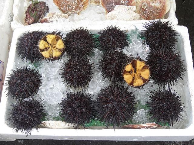 Oursins prêt à être déguster au marché de Hakodate