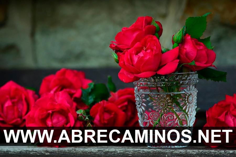 Baño Dulce con Rosas para se Enamore