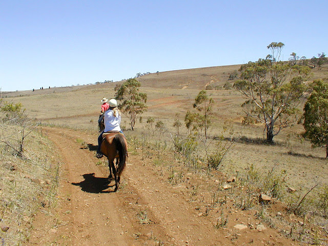 Horse riding in the Snowy Mountains, Australia. Phot by Loire Valley Time Travel.