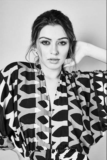 Hansika Motwani Hot HD Wallpaper