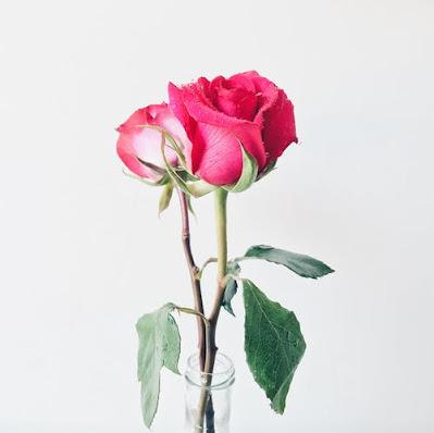Best Romantic Pidgin Love Poems