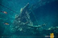 Skeleton Wreck Coron
