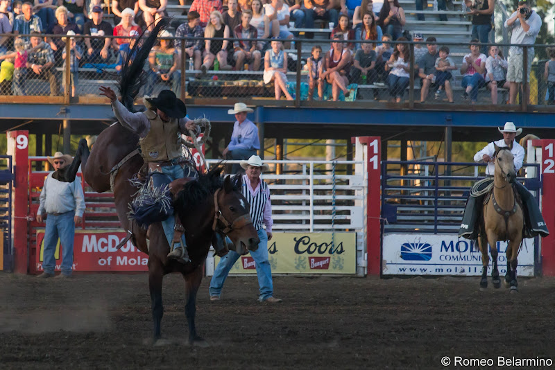 Molalla Buckeroo PRCA Rodeo Saddle Bronc Things to Do In Oregon City and Mt. Hood Territory