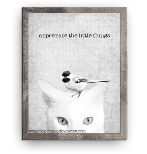 Cat and Bird Mini Poster-Appreciate the little things. You can purchase and download our photography creations and instantly print at home from our Paper Meadows Photography Shop on ETSY. To Visit our shop now click here.
