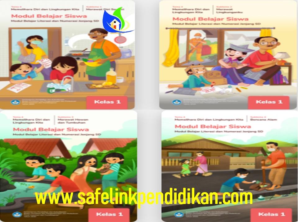 Modul BDR Literasi Dan Numerasi Tema 4