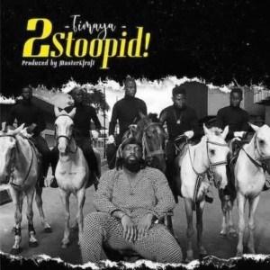 [Mp3] Timaya - 2 Stoopid