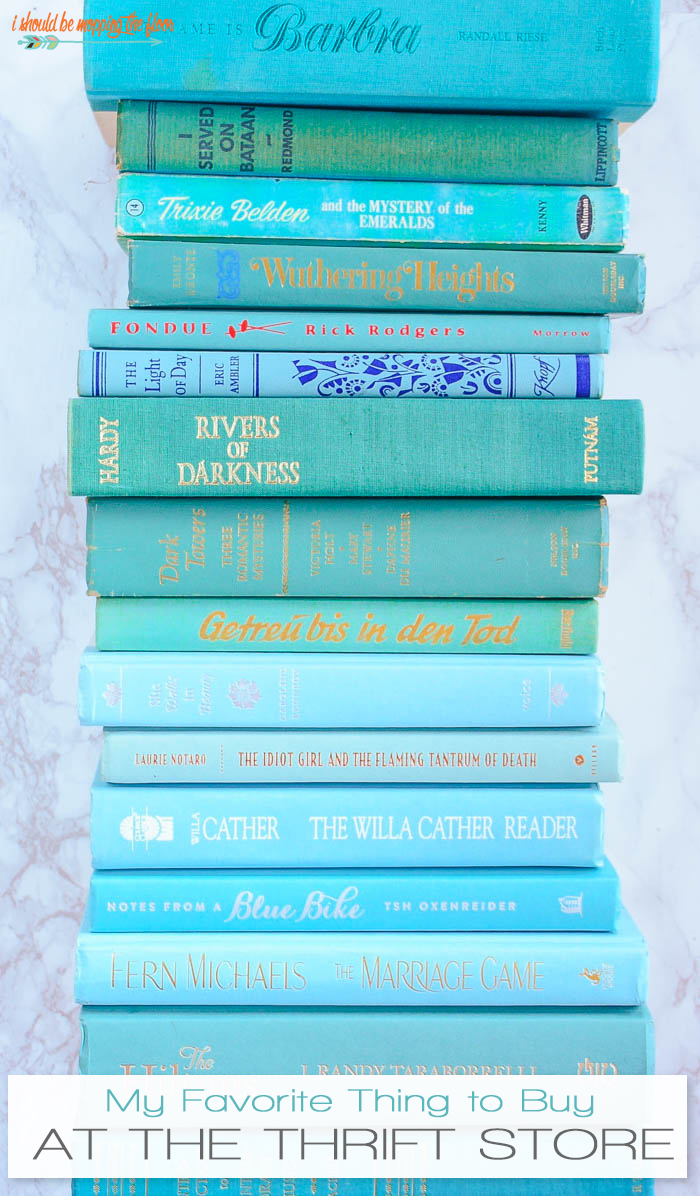 Collecting vintage books is a fun way to decorate on the cheap! Find all sorts of these at thrift shops...group by color for a great look!