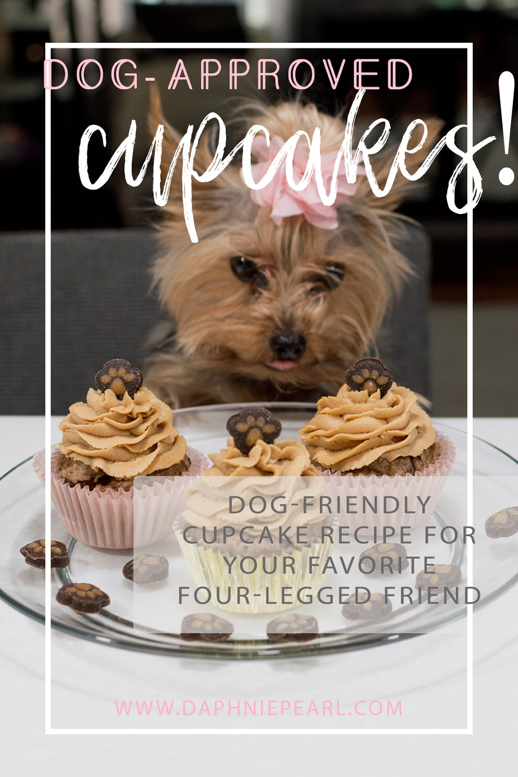 Dog-Approved Cupcakes for Cupcake's Birthday! - Daphnie Pearl
