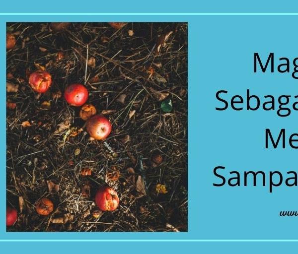 Maggot BSF Sebagai Alternatif Mengolah Sampah Makanan
