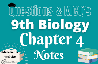 9th Biology Chapter 4 Cells and Tissues Notes