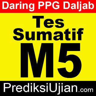 Jawaban Sumatif M5 Profesional - English for Academic Interaction