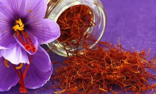 efek samping saffron bagi kesehatan - kanalmu