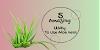 5 Amazing way to use Aloe vera