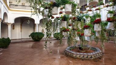 El Festival Flora vuelve a Córdoba con cinco patios