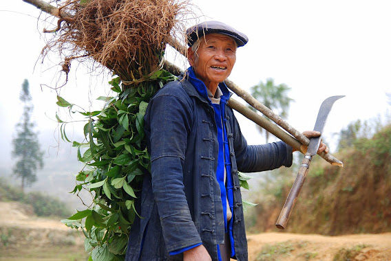 The Chinese Farmer