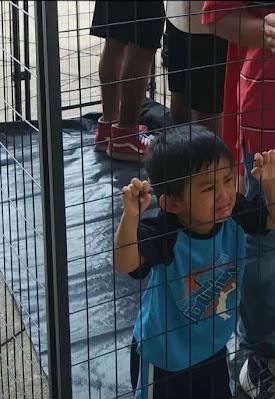 Niños en jaulas: desinformación y miseria moral