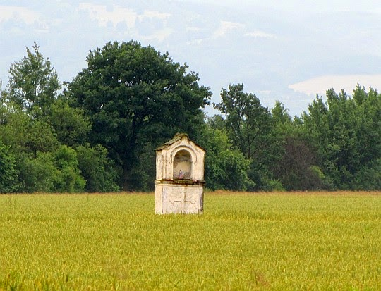 Kapliczka w polach pomiędzy Trzeboszowicami i Ratnowicami.