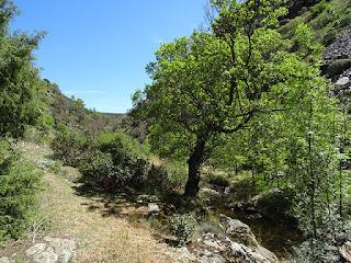 Arroyo de la Hoz