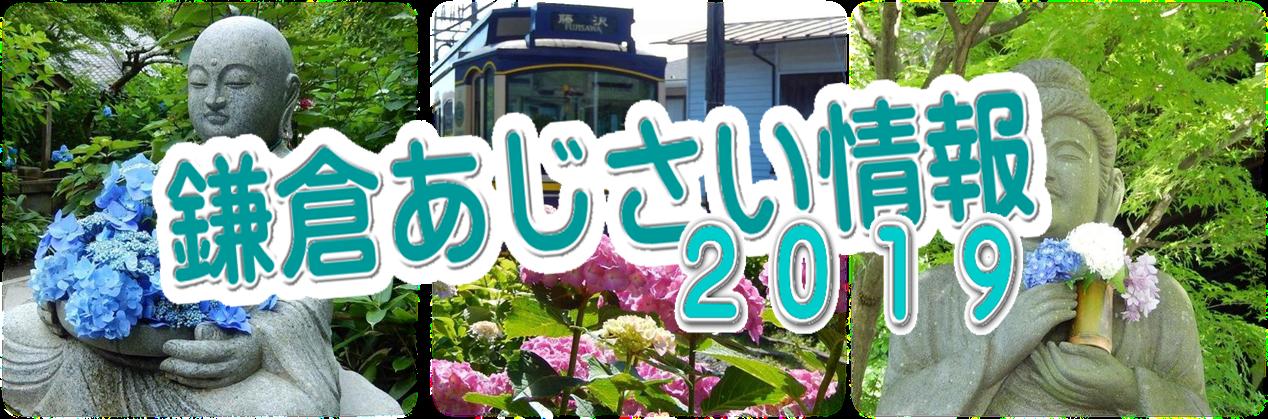 2019鎌倉アジサイ情報