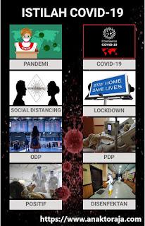 Daftar Istilah Umum Terkait Pandemi Covid-19 (Virus Corona)