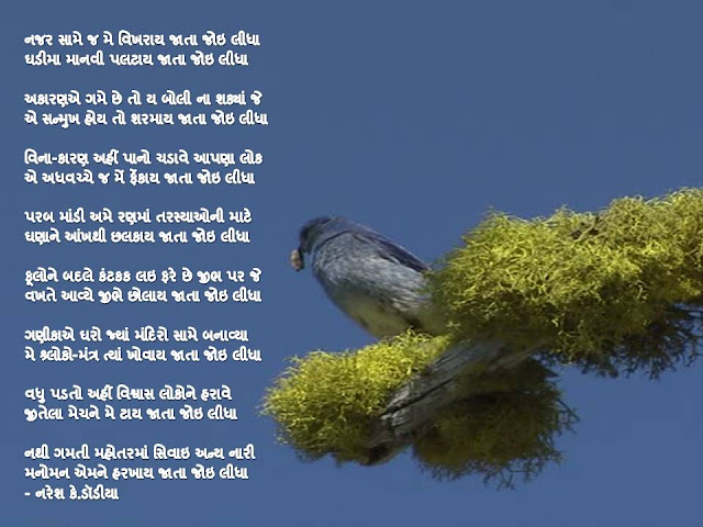 नजर सामे ज मे विखराय जाता जोइ लीधा Gujarati Gazal By Naresh K. Dodia