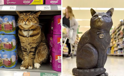 Morrisons has made a beloved cat into a bronze statue so his memory can live on