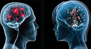 The difference between a conscious mind and an unconscious mind.