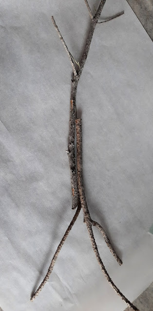 Hot Glue Branches Together