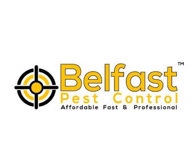 Pest Control In Belfast  | Belfast Pest Control