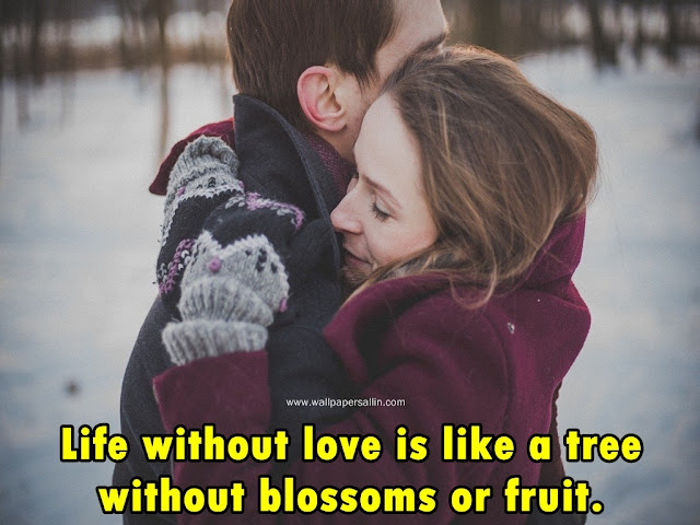 Love Wallpapers | full HD Love Wallpapers free download