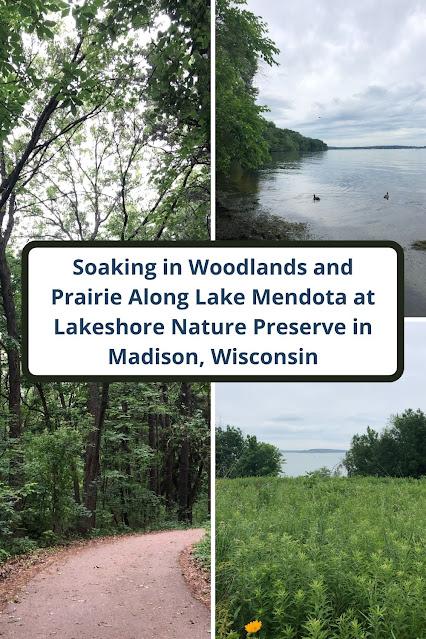 Soaking in the Woodlands and Prairie Along Lake Mendota at Lakeshore Nature Preserve