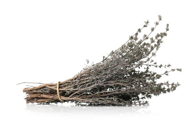 Benefits of wild thyme for the body what are they?