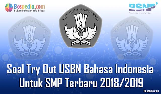 20+ Paket Soal Try Out USBN Bahasa Indonesia Untuk SMP Terbaru 2018/2019
