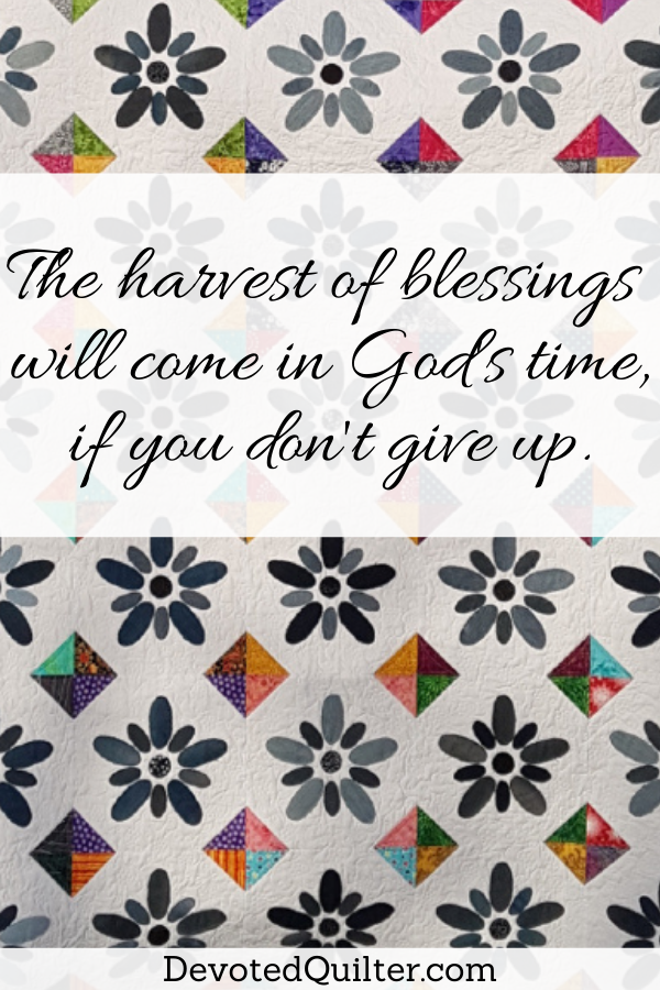 The harvest of blessings will come in God's time, if you don't give up | DevotedQuilter.com