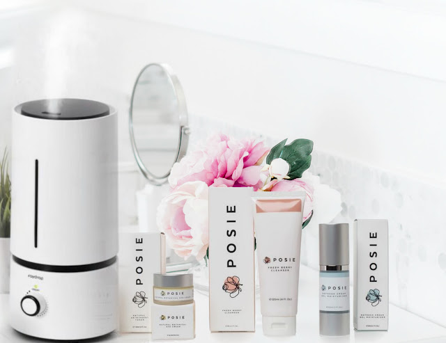 best humidifier for dry skin 2019 by barbies beauty bits
