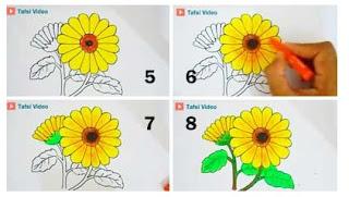 800 Gambar Bunga Matahari Gelap Terang Gambar Id