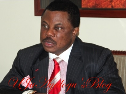 I Won't Increase Workers' Salaries Yet - Gov. Obiano