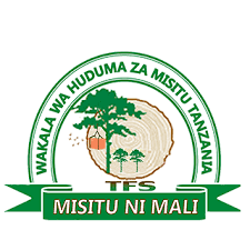 23 Governmnet Job Opportunities at Tanzania Forest Services (TFS)