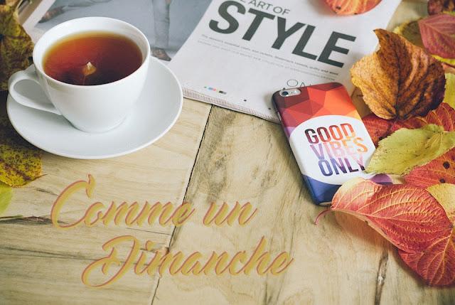 https://laplanquealibellules.blogspot.com/2018/01/comme-un-dimanche-10.html