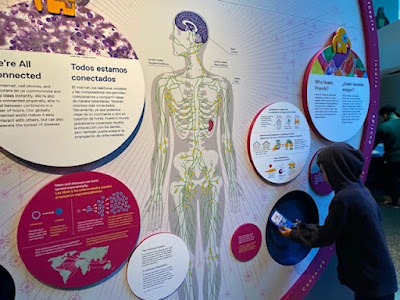Interactive science displays at Frost Museum, Miami