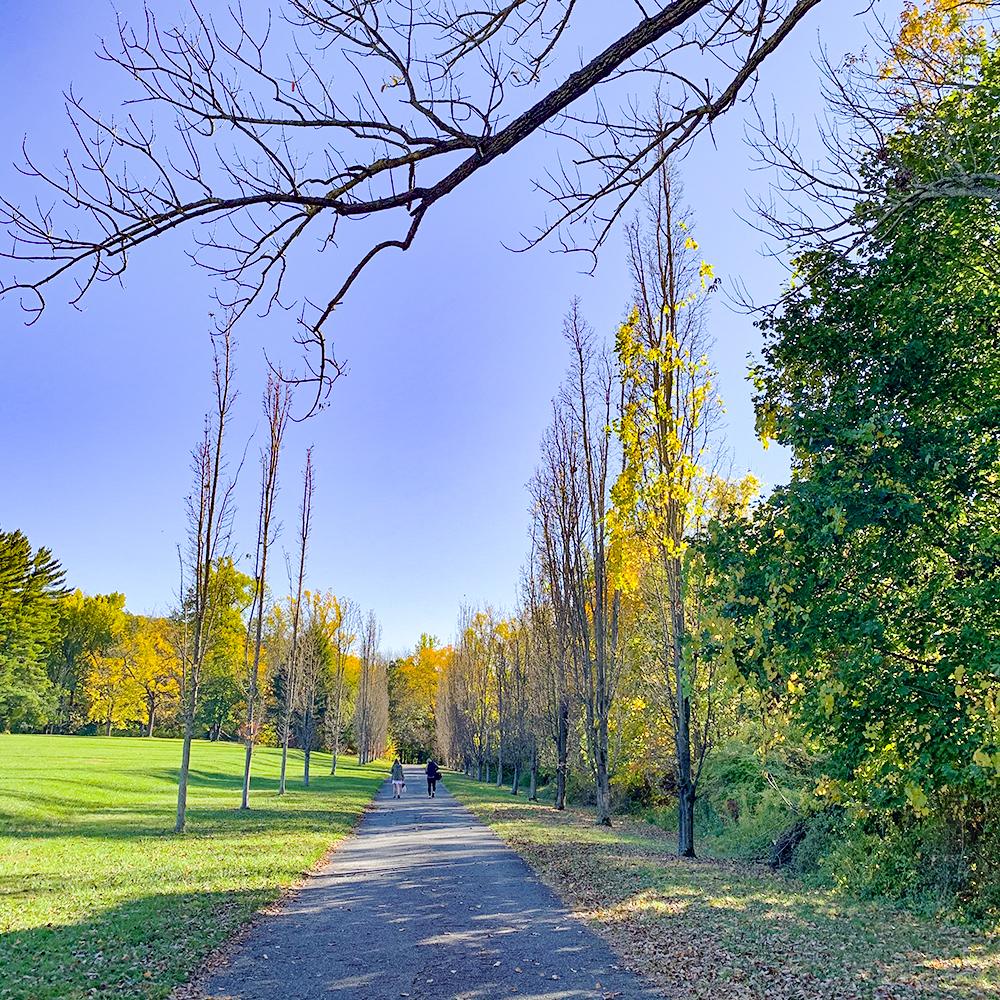 NJ Botanical Garden 2020