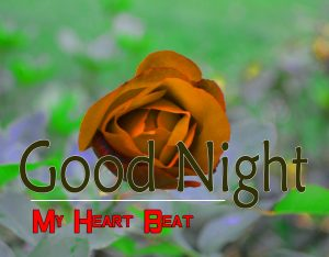 Beautiful Good Night 4k Images For Whatsapp Download 121