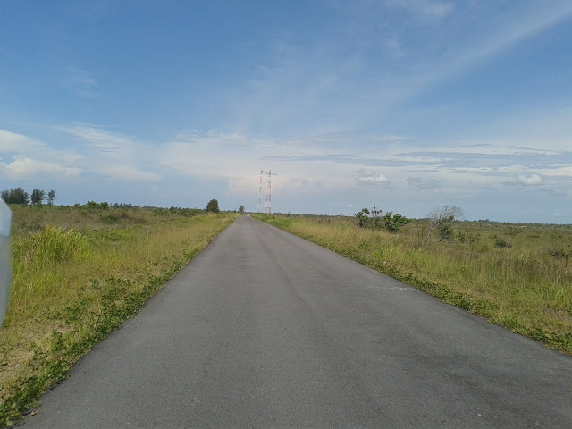 Padang Savana kalap
